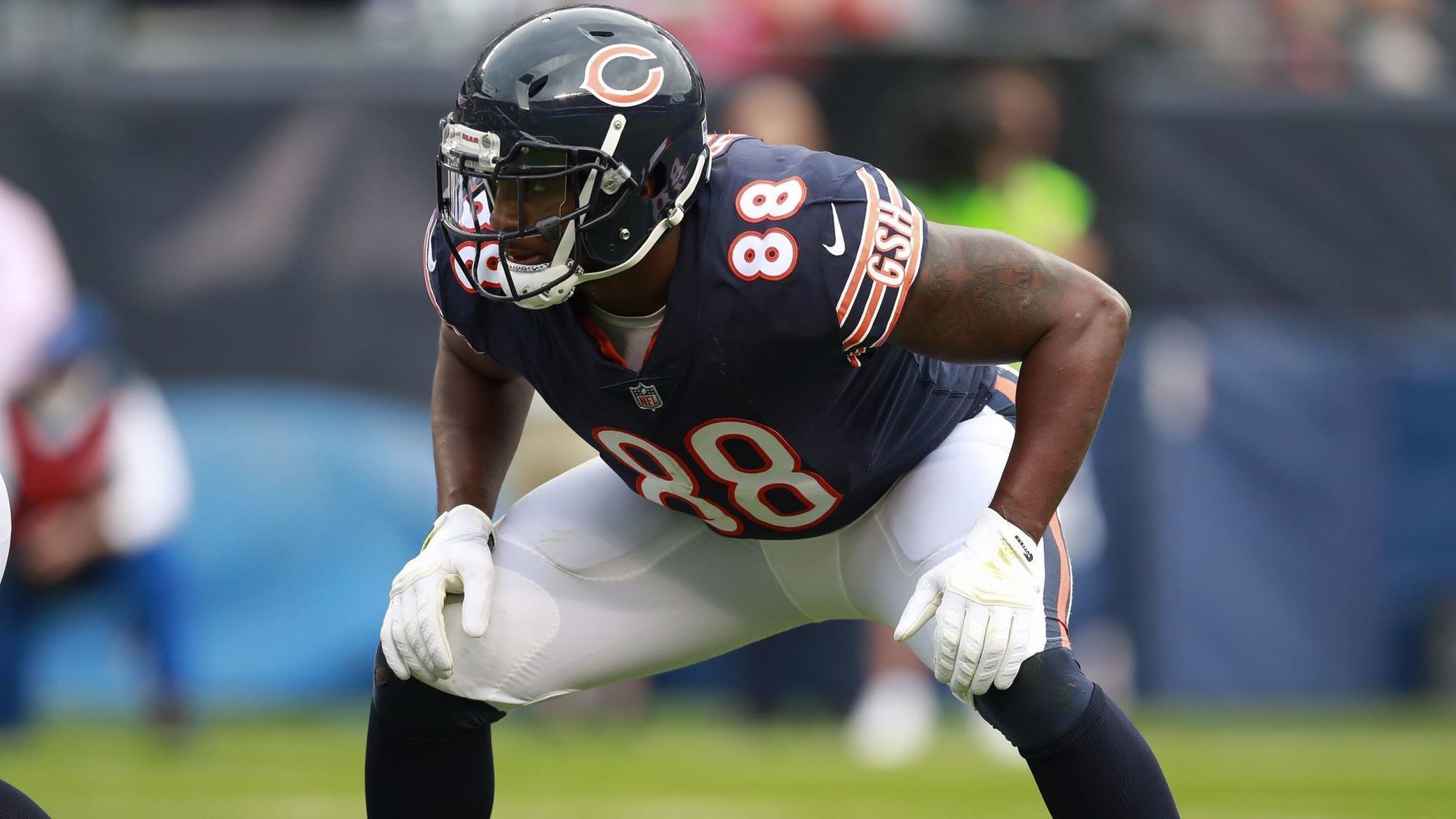 Image result for dion sims bears