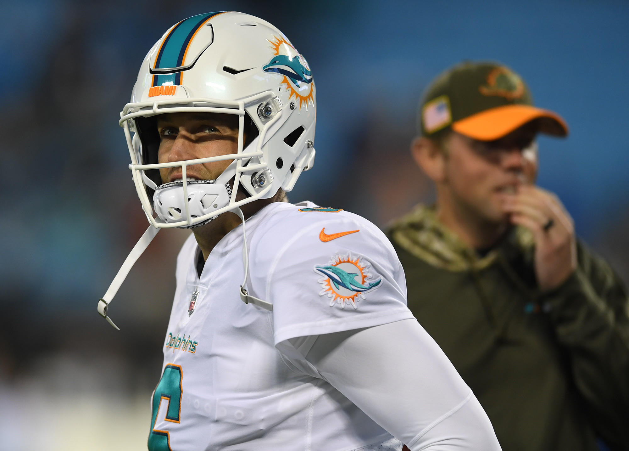Fl-sp-dolphins-20171117