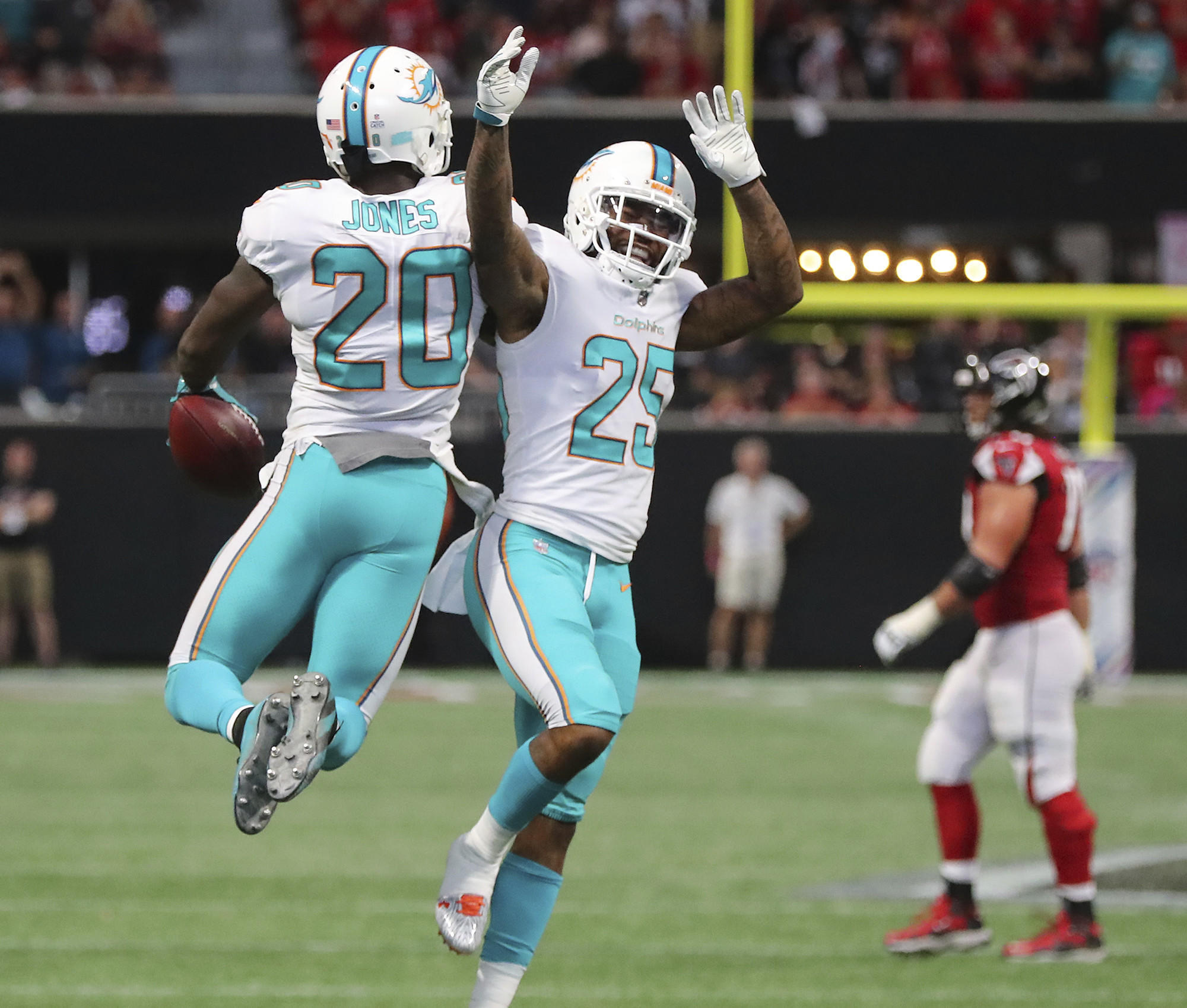 Fl-sp-dolphins-notes-20171117