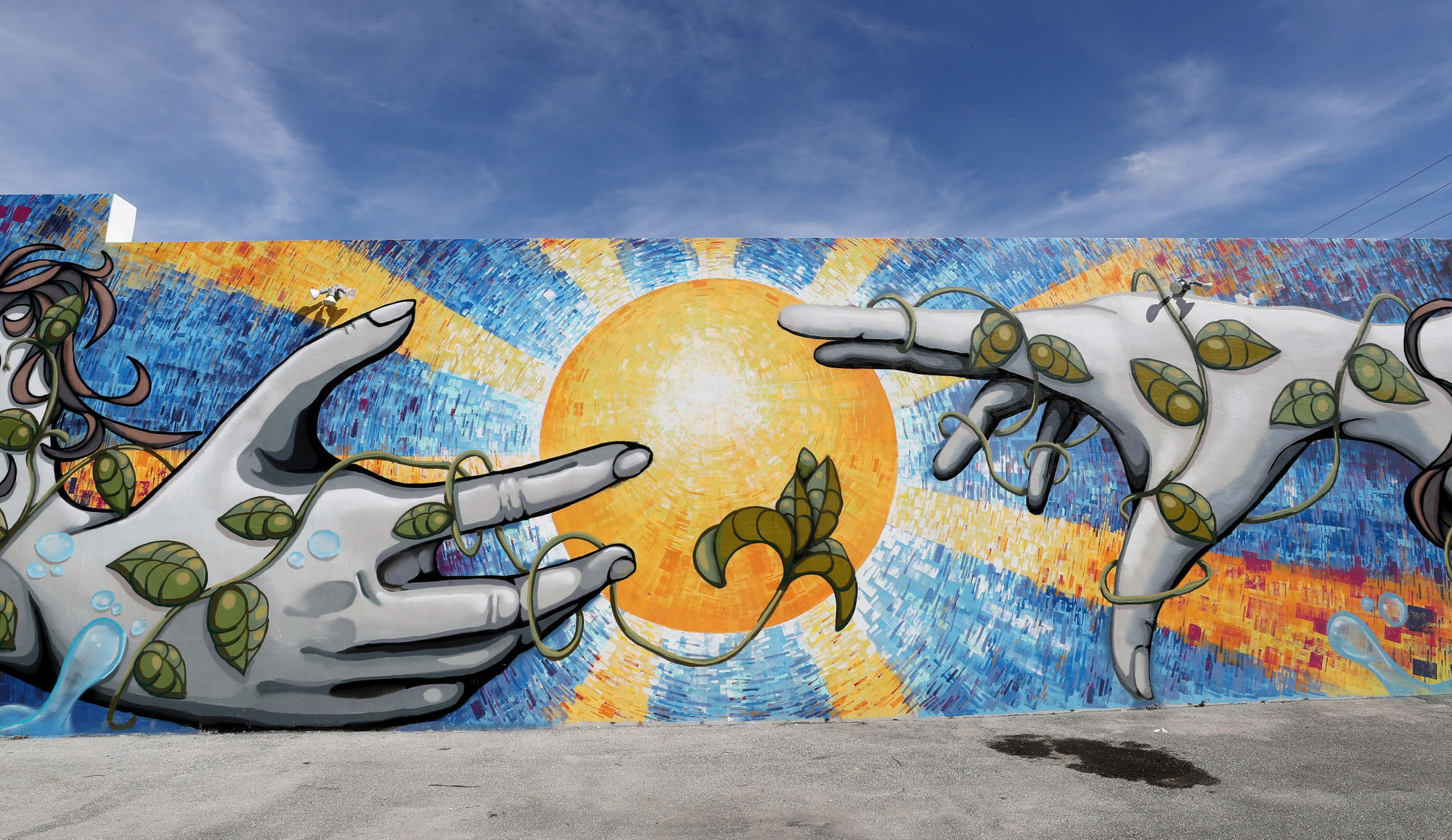 Watch out wynwood hollywood 39 s murals are turning heads for Downtown hollywood mural project