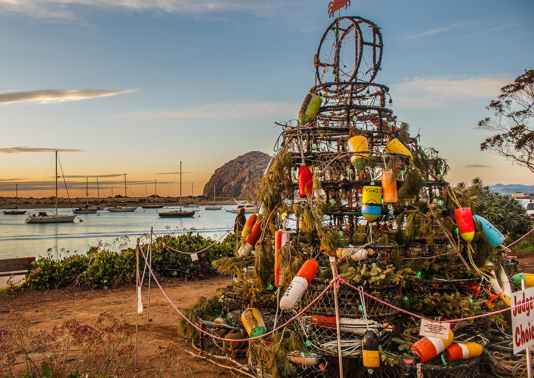 Morro Bay Crab Pot Tree
