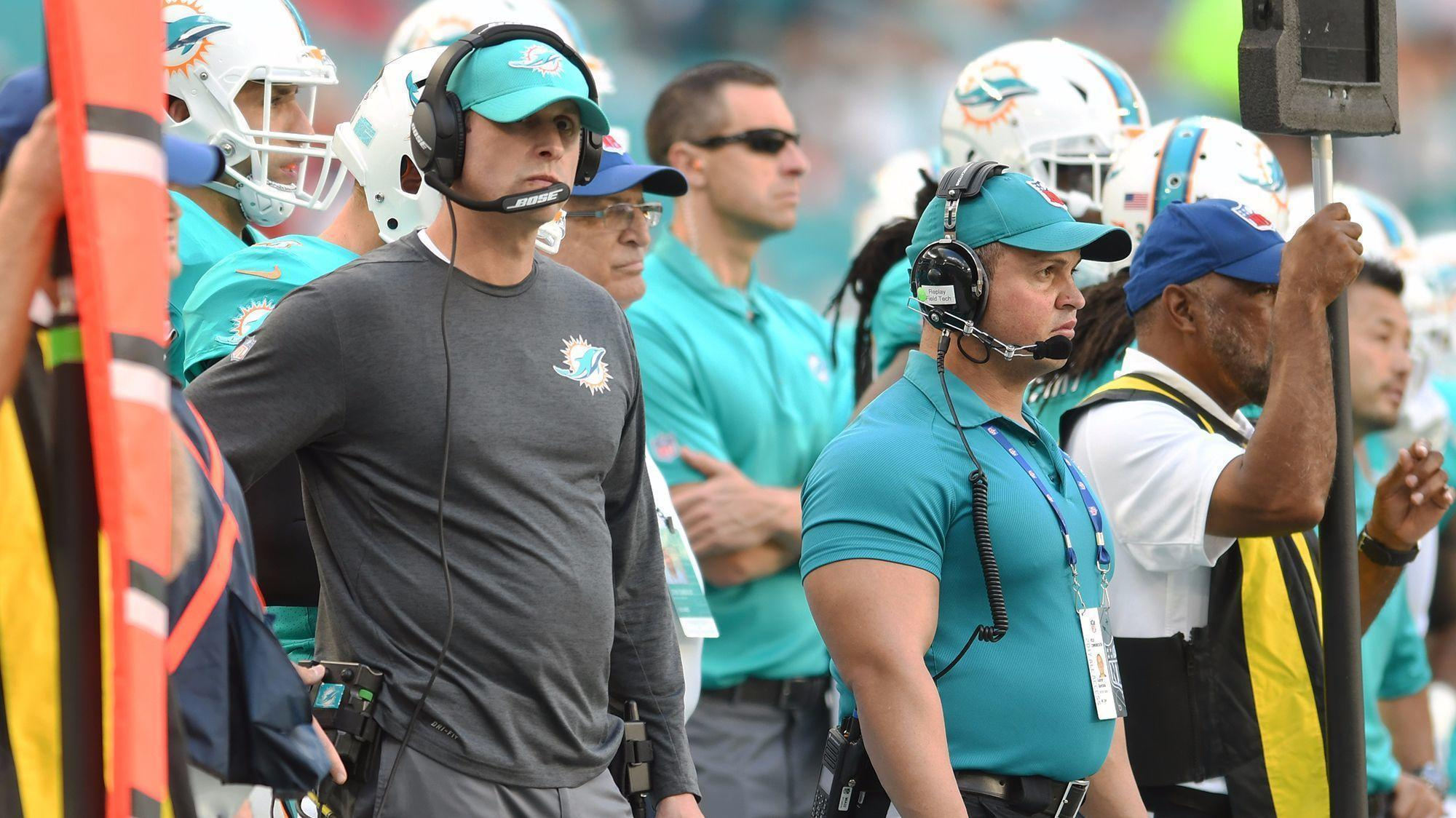 Fl-sp-dolphins-notes-20171203