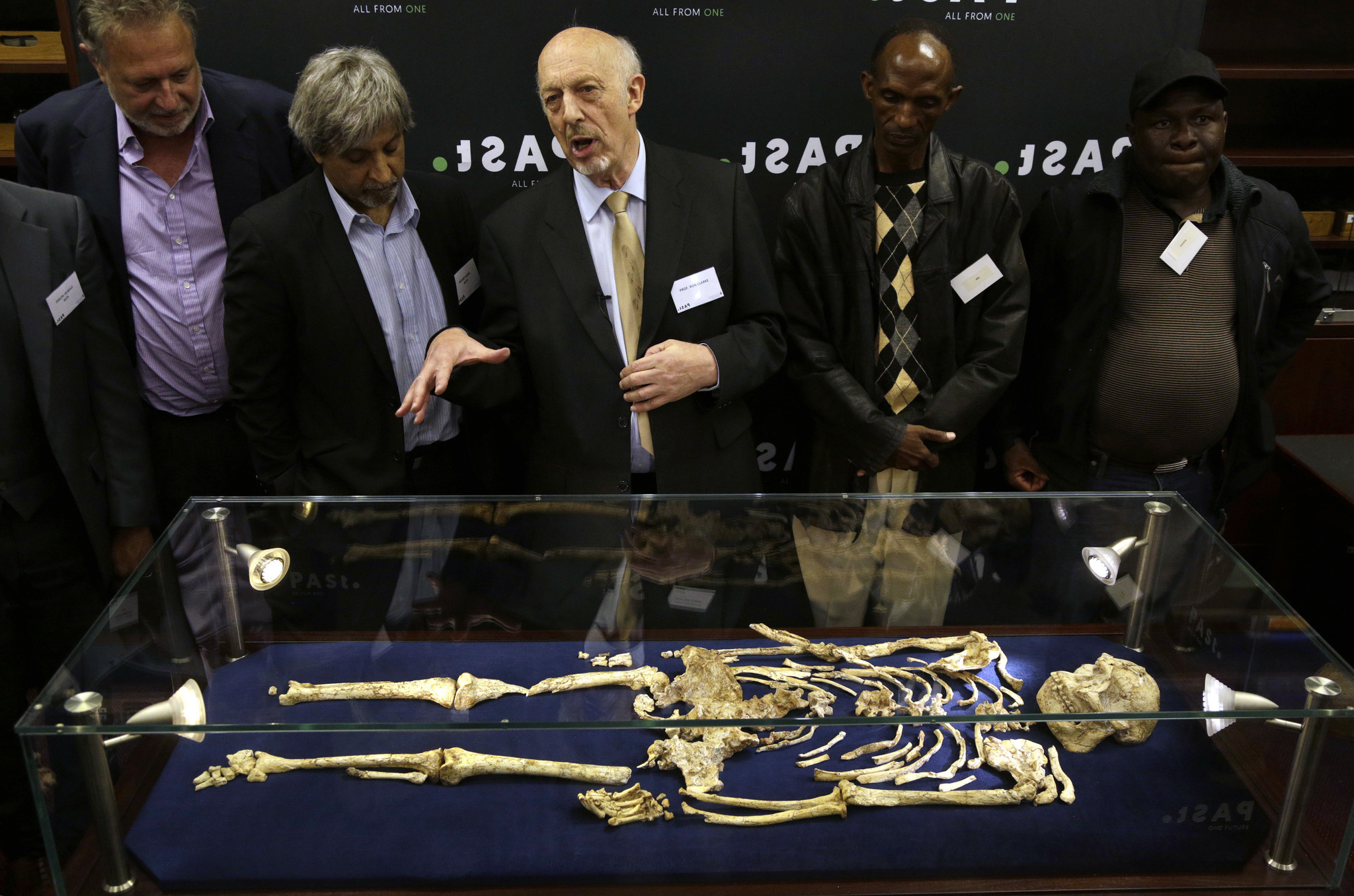 Researchers unveil rare skeleton of human ancestor from 3.6 million years ago
