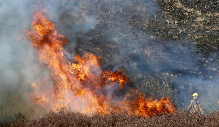 Vegetation fire near the corner of Beach Boulevard and Adams Avenue. (Allen J. Schaben / Los Angeles Times)