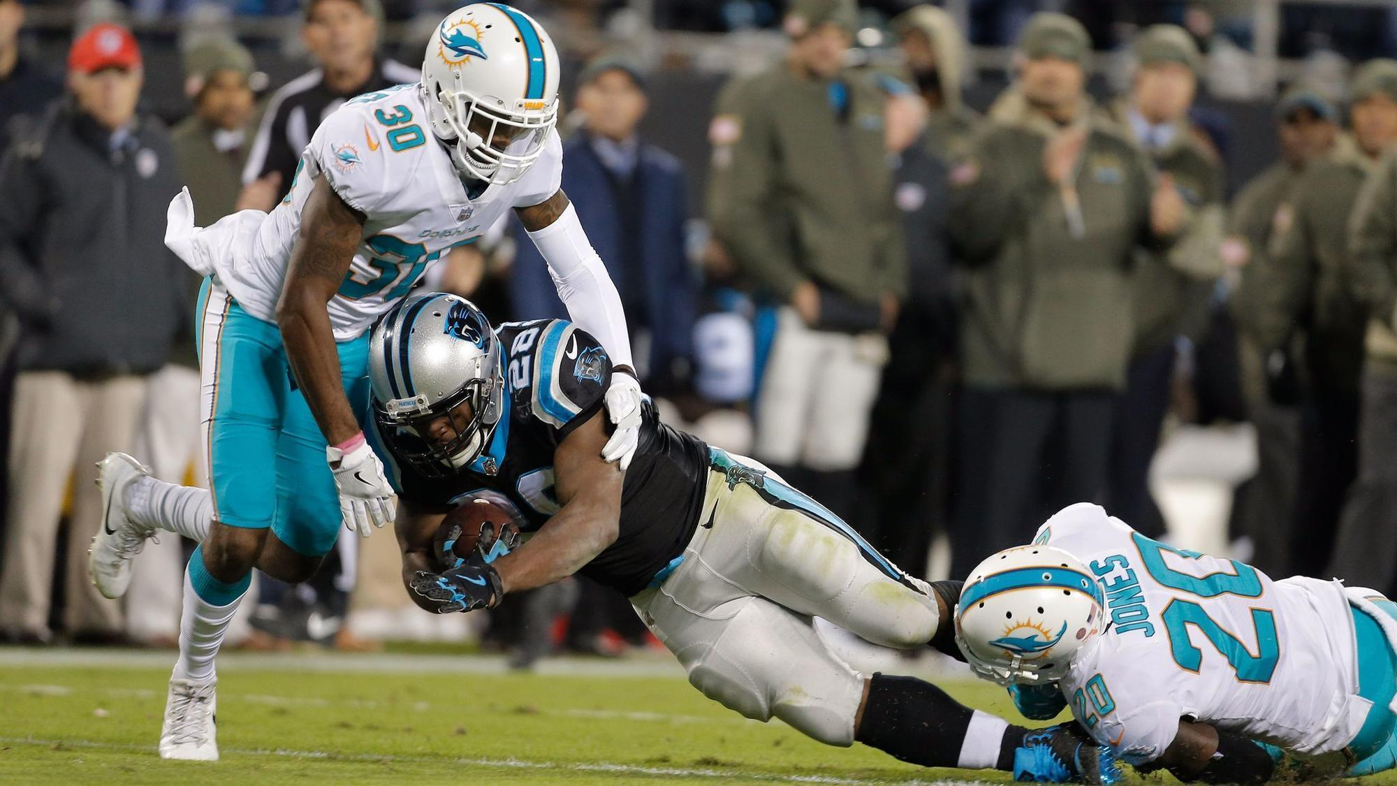 Fl-sp-dolphins-notes-20171209