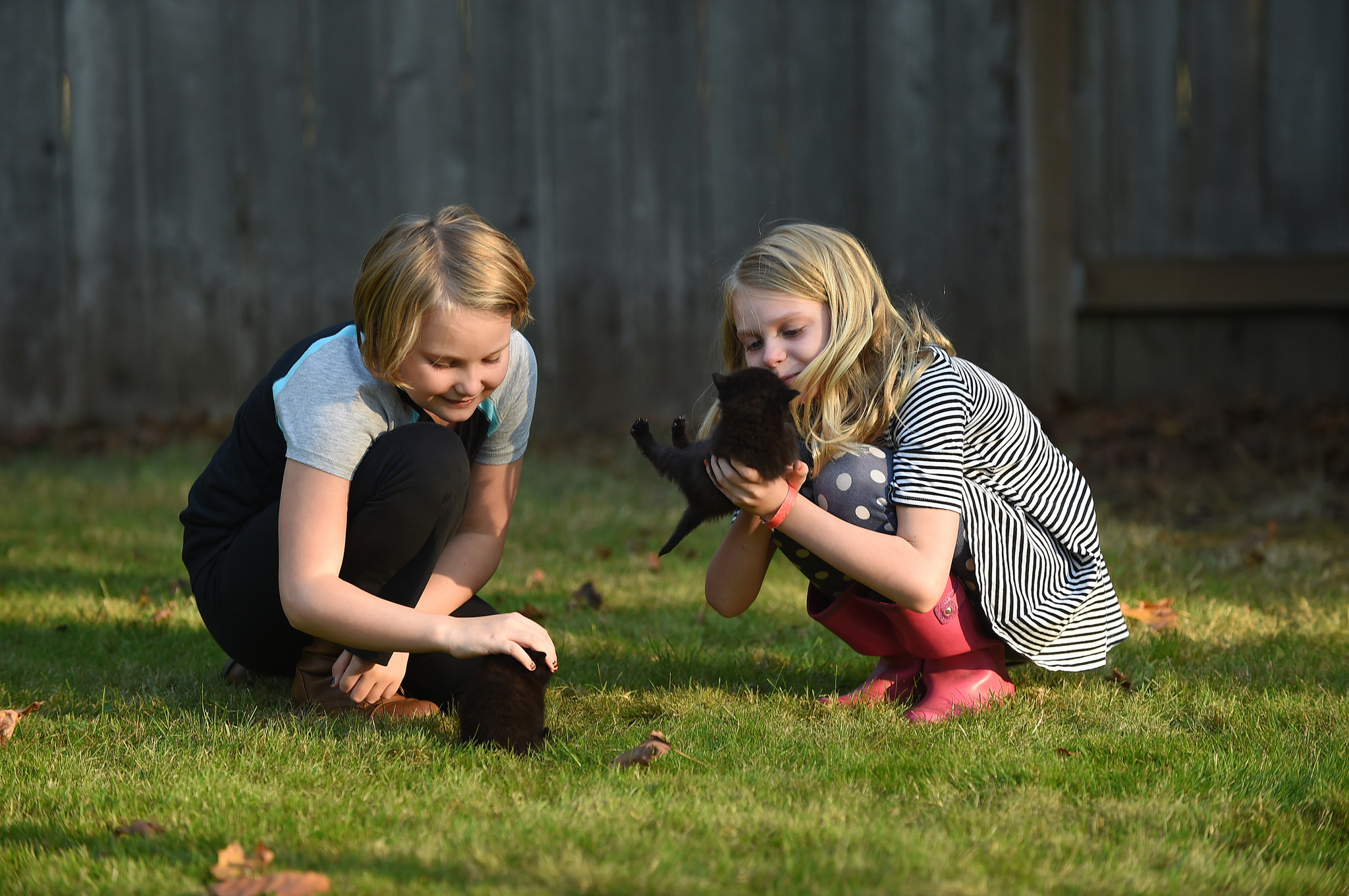 Madeline, 9, left, and Samantha, 8, play with their new kittens, Pirate and Orion, in their backyard in Washington state after school in October 2017.