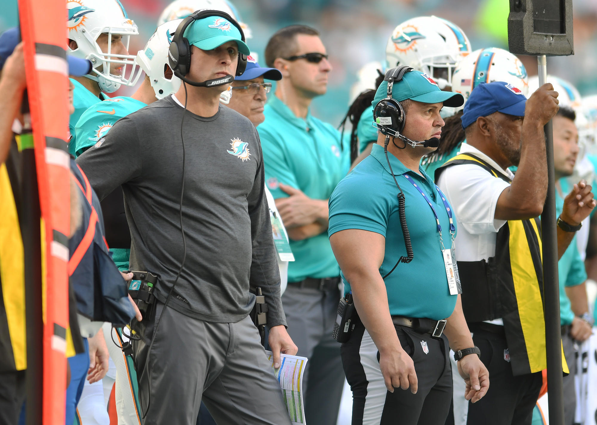 Fl-sp-dolphins-20171212
