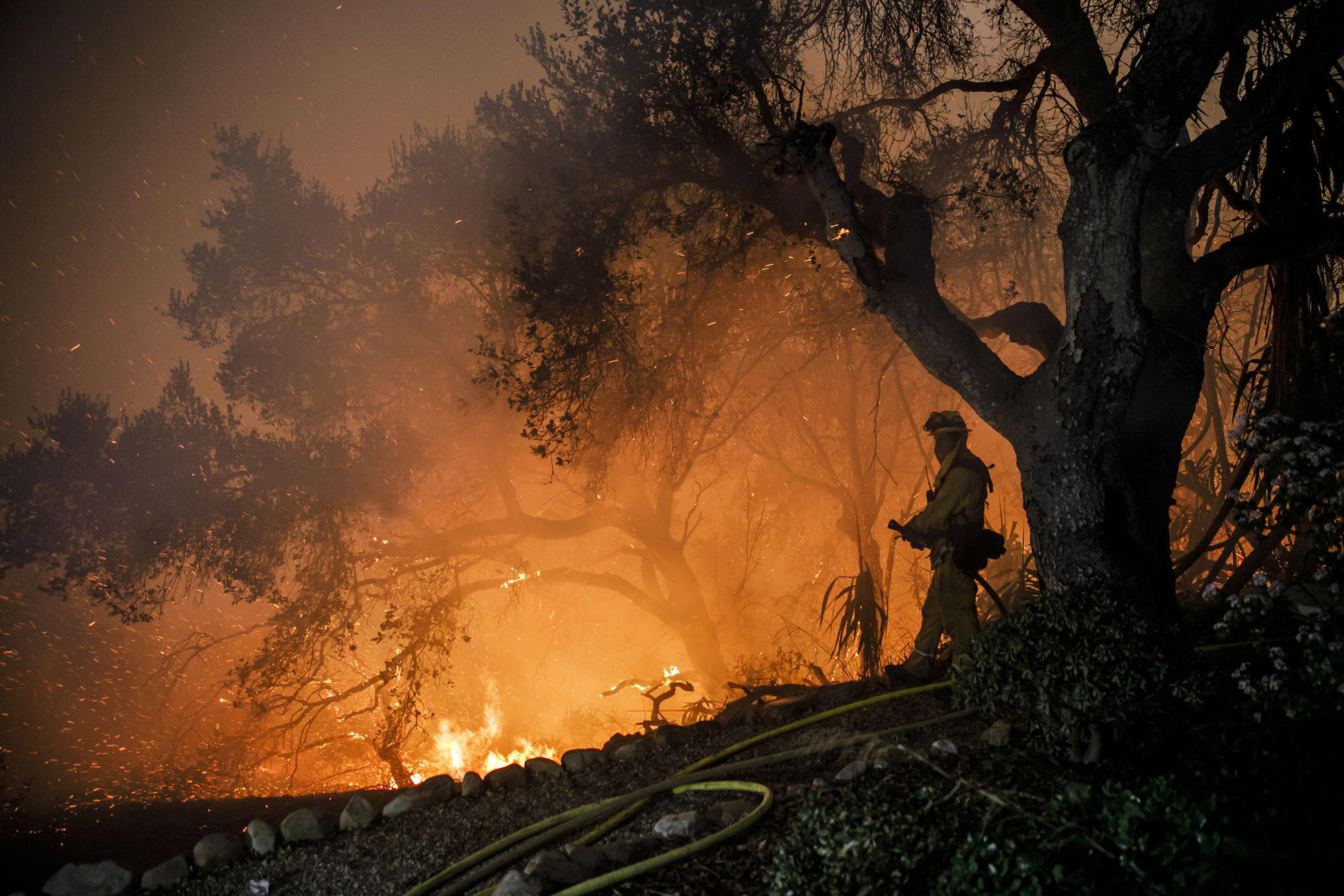 The inferno that wont die How the Thomas fire became a monster