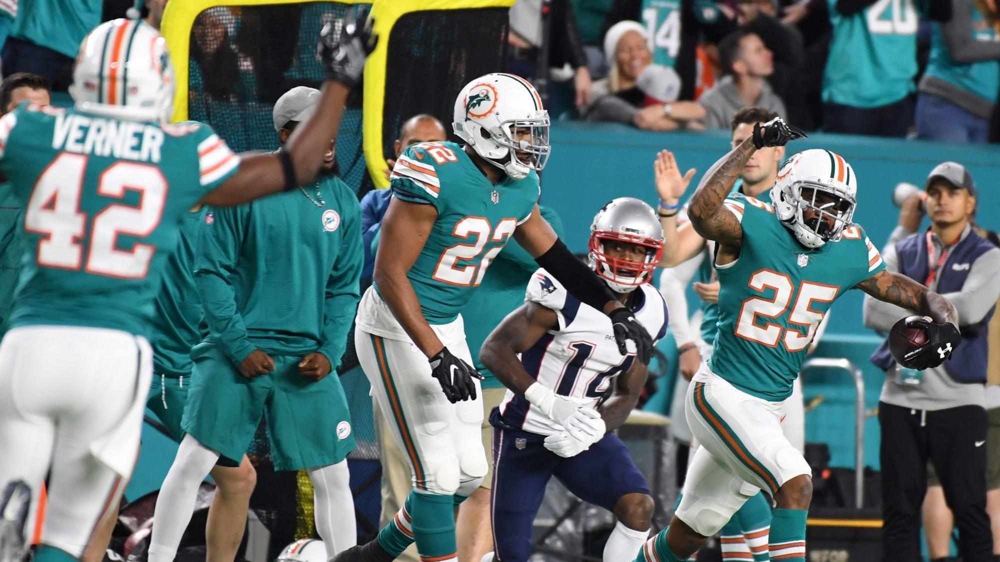 Fl-sp-dolphins-kelly-column-20171214