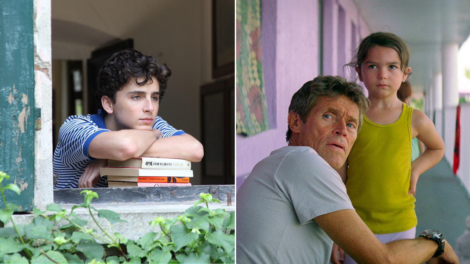 'Call Me By Your Name' and 'The Florida Project'