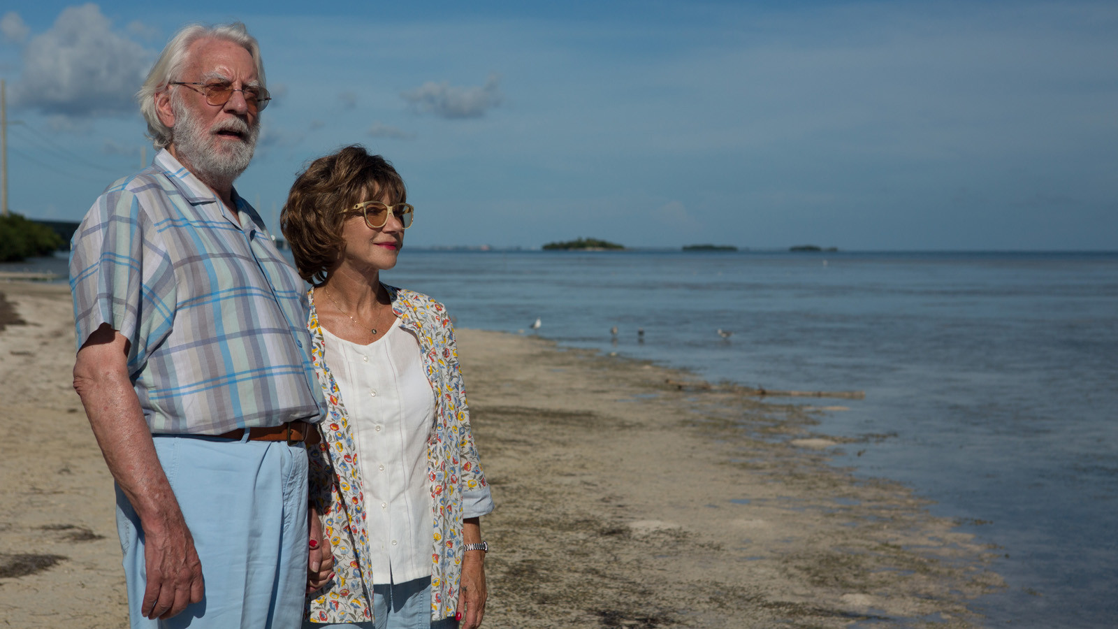 the leisure seeker sticks to the trite and true la times