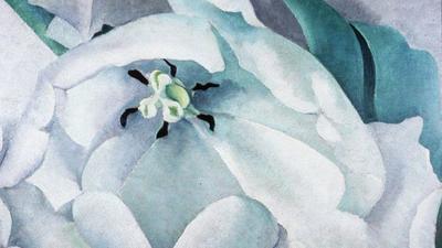 Winter visual arts: Flurry of exhibits in Hampton Roads