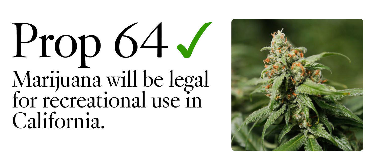 legalizing marijuana for recreational purposes The state senate on thursday voted to ask on the november ballot whether  recreational use of marijuana should be legalized and taxed in.