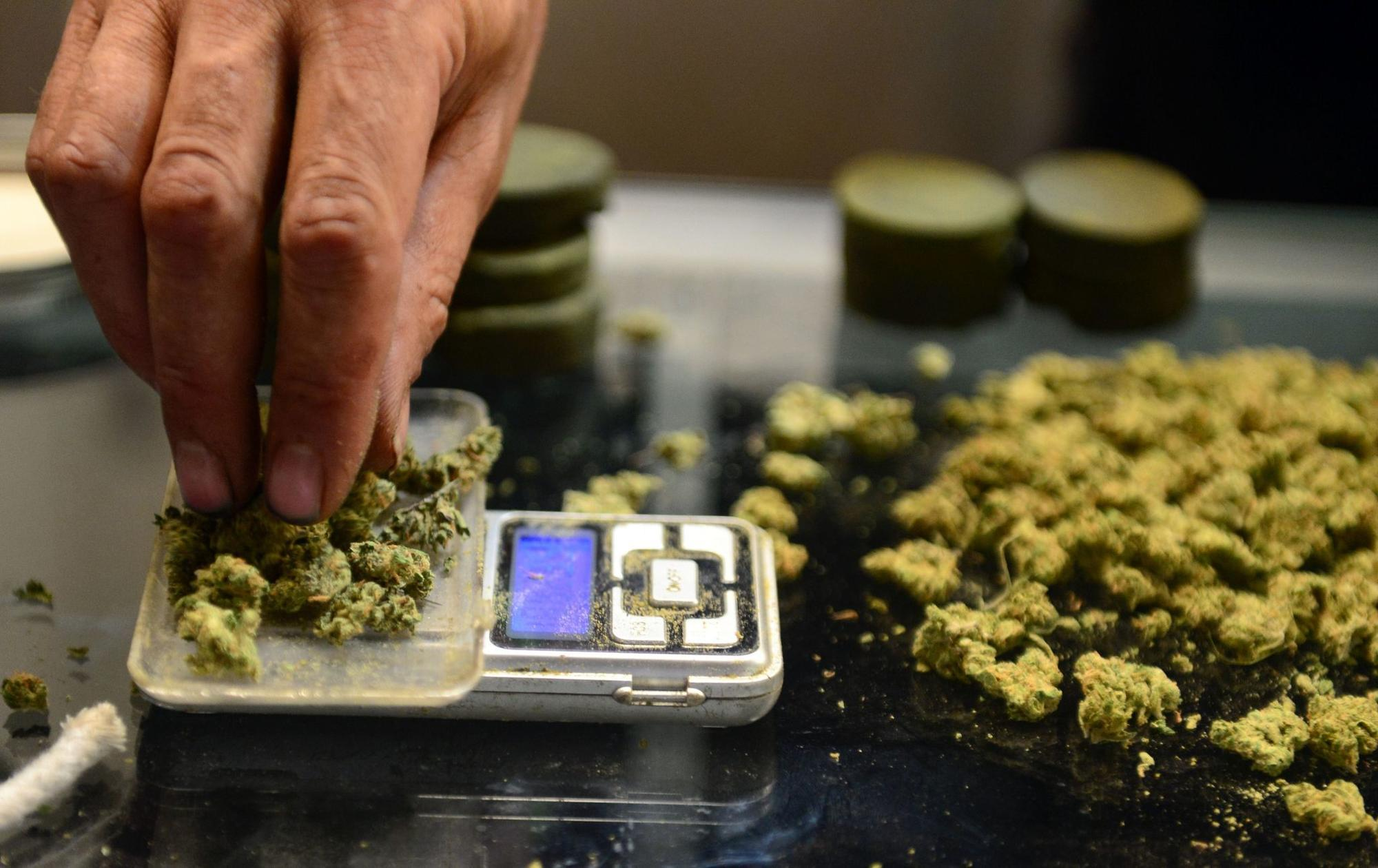Image result for free to use image of legal pot in california
