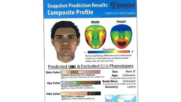 DNA profile