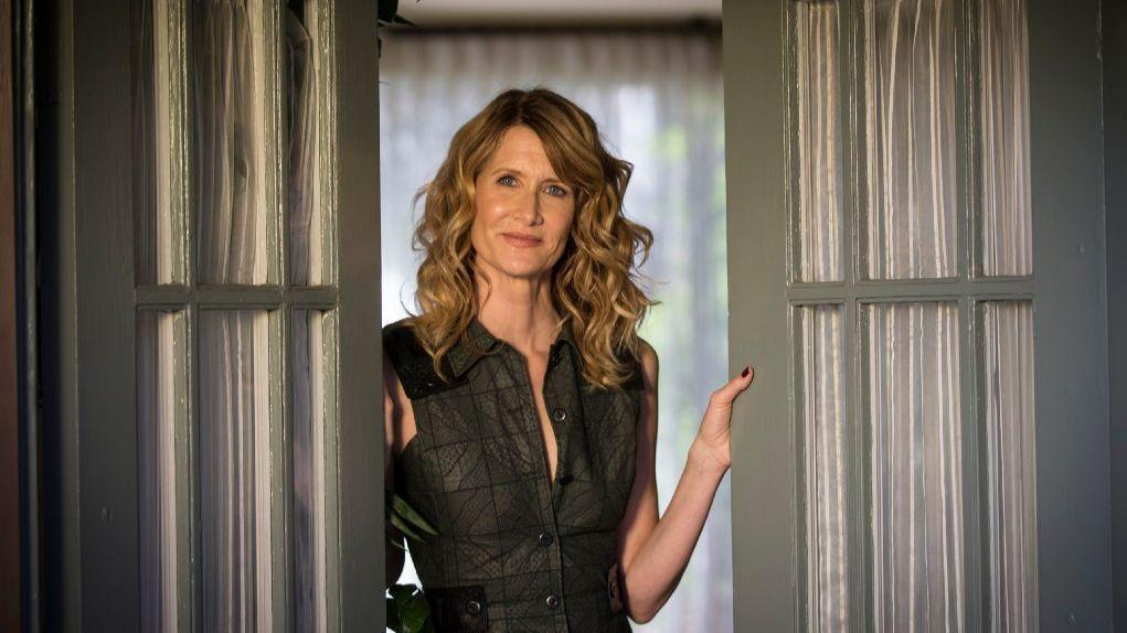 Laura Dern Wins Supporting Actress In A Tv Series Limited
