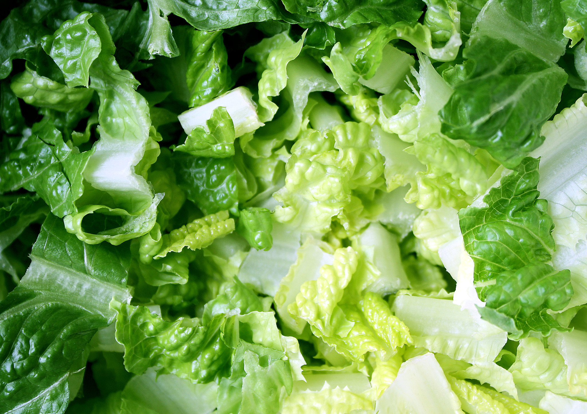 Romaine Lettuce Is A Bad Choice Right Now Health Agencies Warn La Times