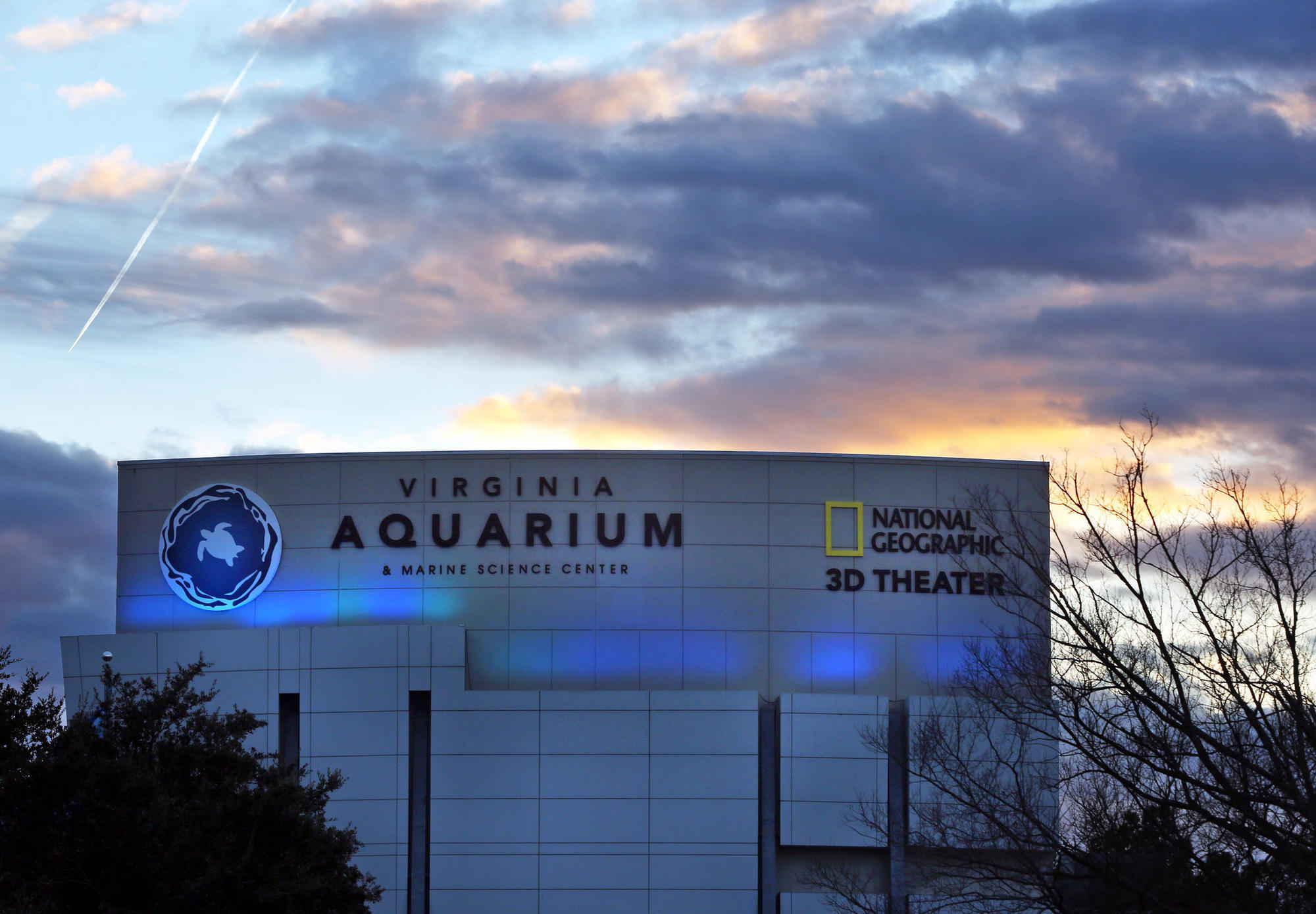 Virginia Beach Aquarium Ticket Discounts