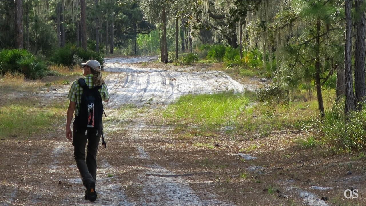 Florida National Scenic Trail to move away from roads in Central Florida