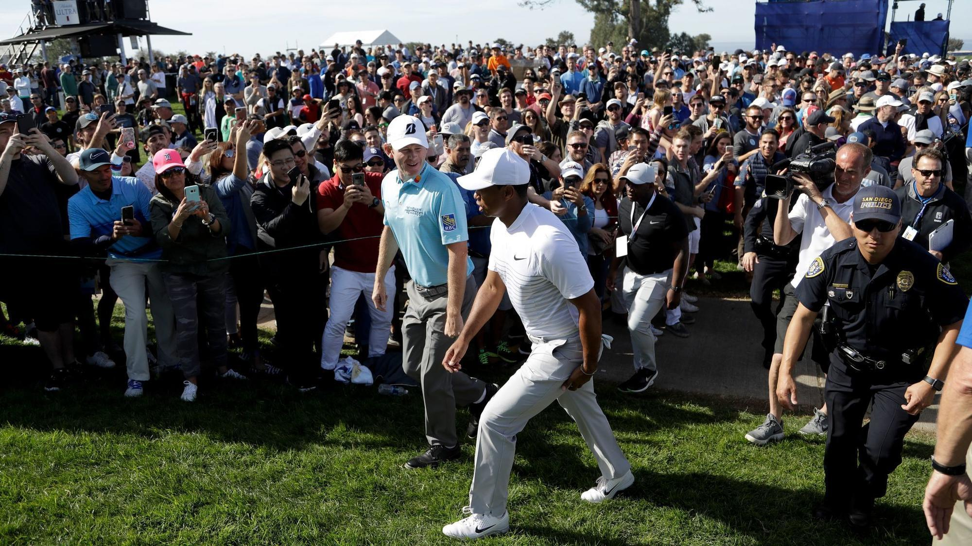 throngs track tiger  hoping for glimpse of greatness