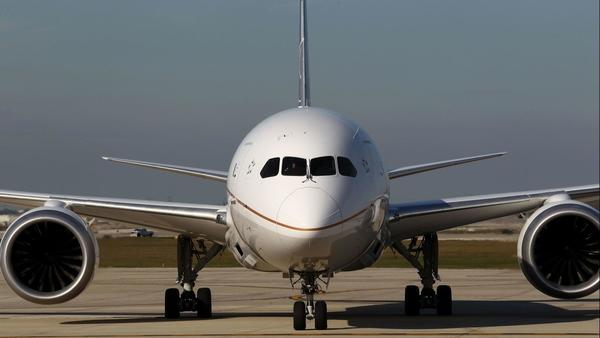 Keeping passengers safe from aircraft predators