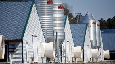 Fowl air? Lawmakers propose study to begin tracking air pollution from Maryland chicken farms