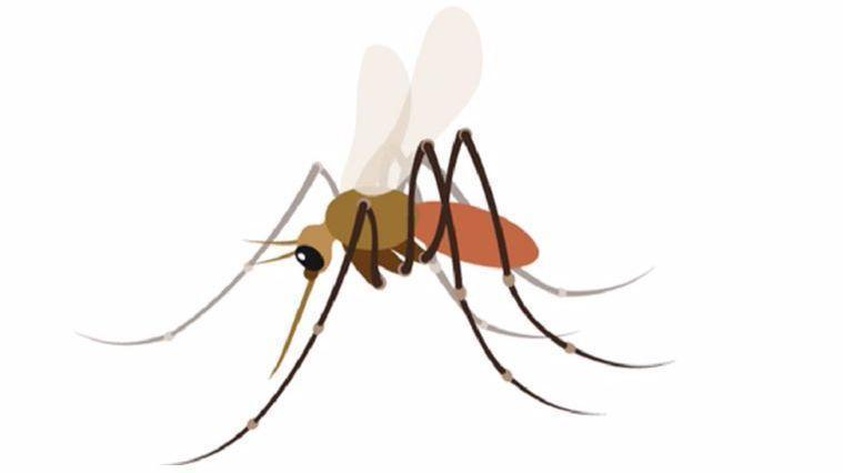 New mosquito emoji scratches itch of public health workers, smartphone users