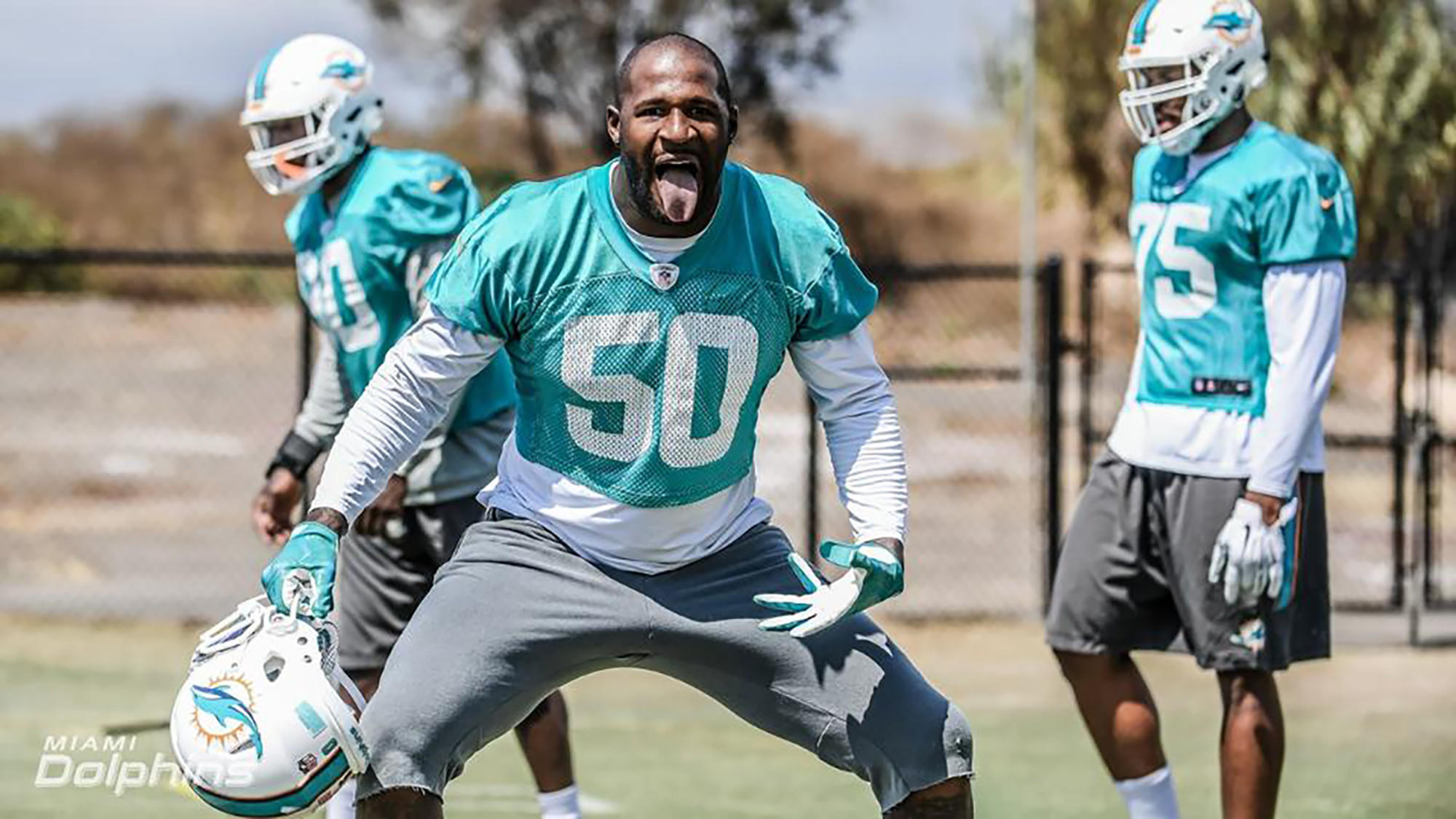 Fl-sp-dolphins-andre-branch-20180214