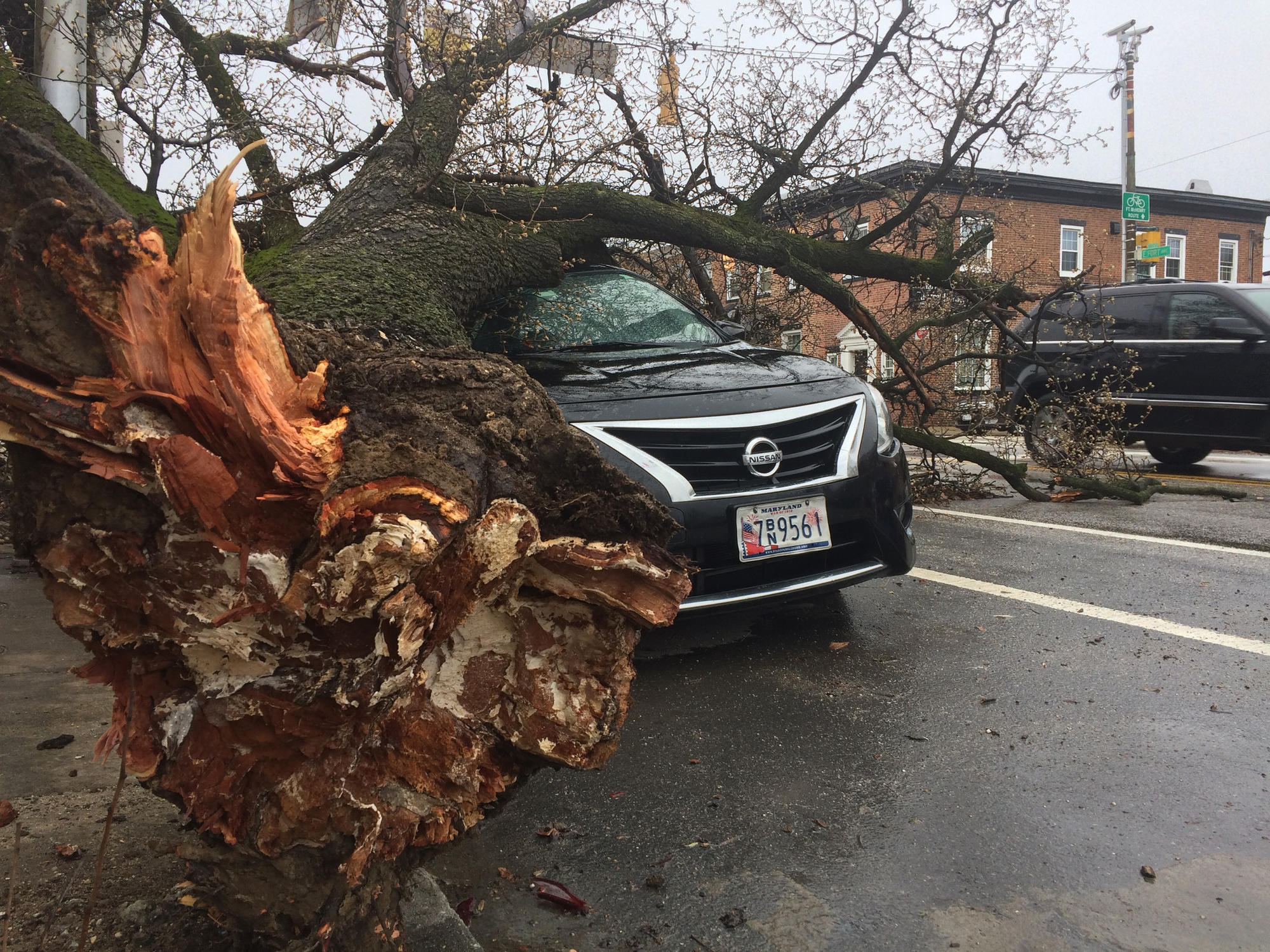 Maryland weather: 200,000 without power amid wind storm - Baltimore on