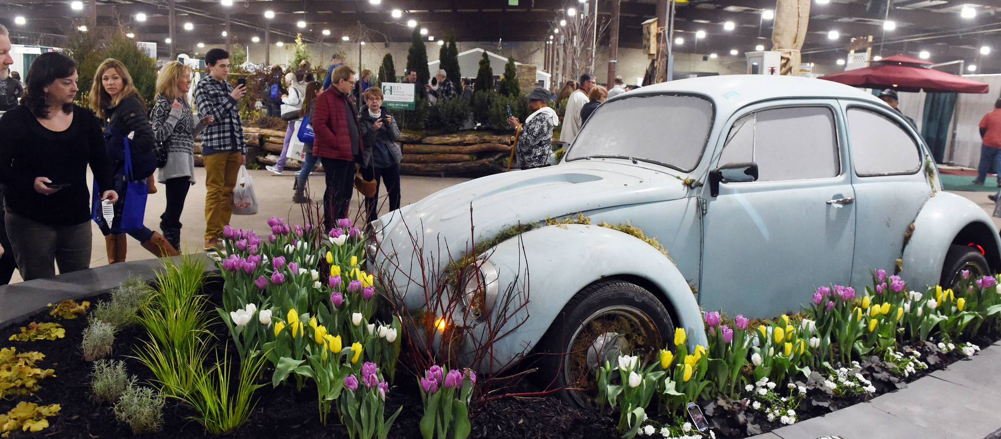 Maryland Home And Garden Show At The Timonium State Fairgrounds - Timonium car show