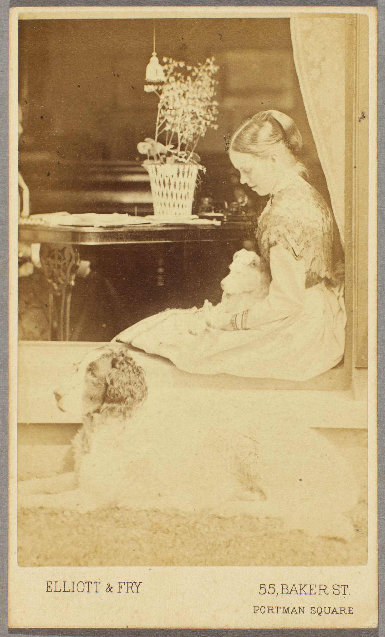 Charles Darwin photo album