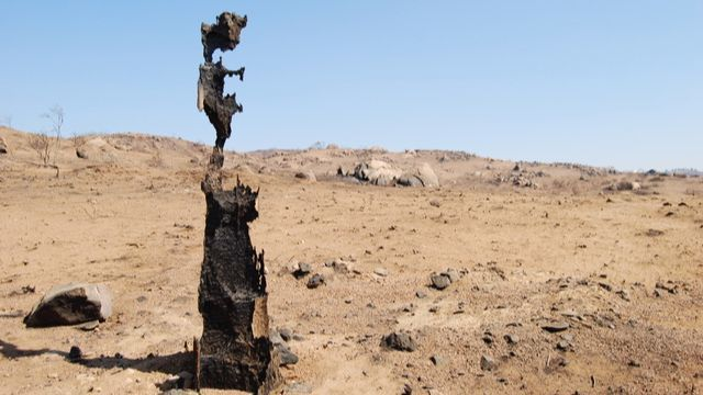 This burned telephone pole is one of the few objects left standing outside Yigal Ben-Aderet's Ramona house after the 2007 Witch Creek wildfire.