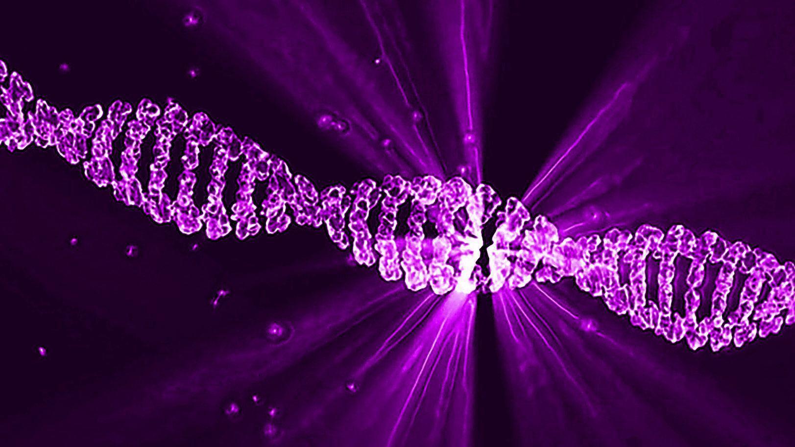 singlera genomics raises 60 million for early stage cancer tests orlando sentinel. Black Bedroom Furniture Sets. Home Design Ideas