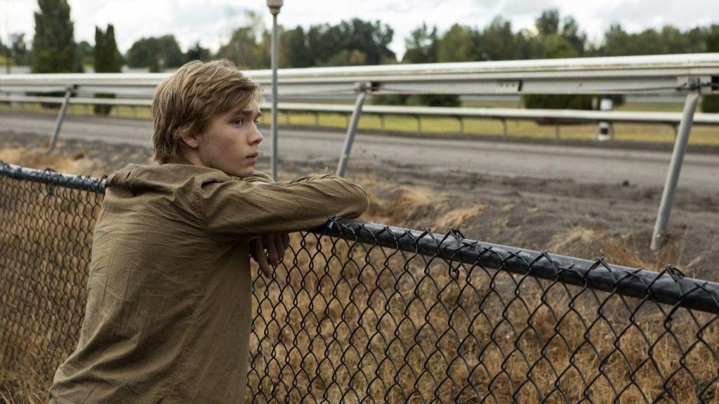 Image result for lean on pete