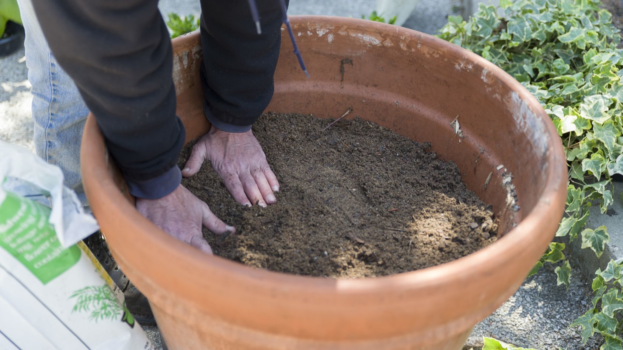 Pick garden containers that fit your taste and space — but ensure they drain properly