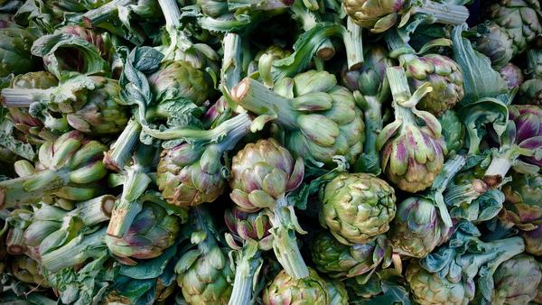 Spring ragout, stews, risotto and more great recipes using artichokes, now in season
