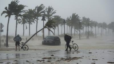 Hurricane Irma powers sharp increase in lawsuits against insurers