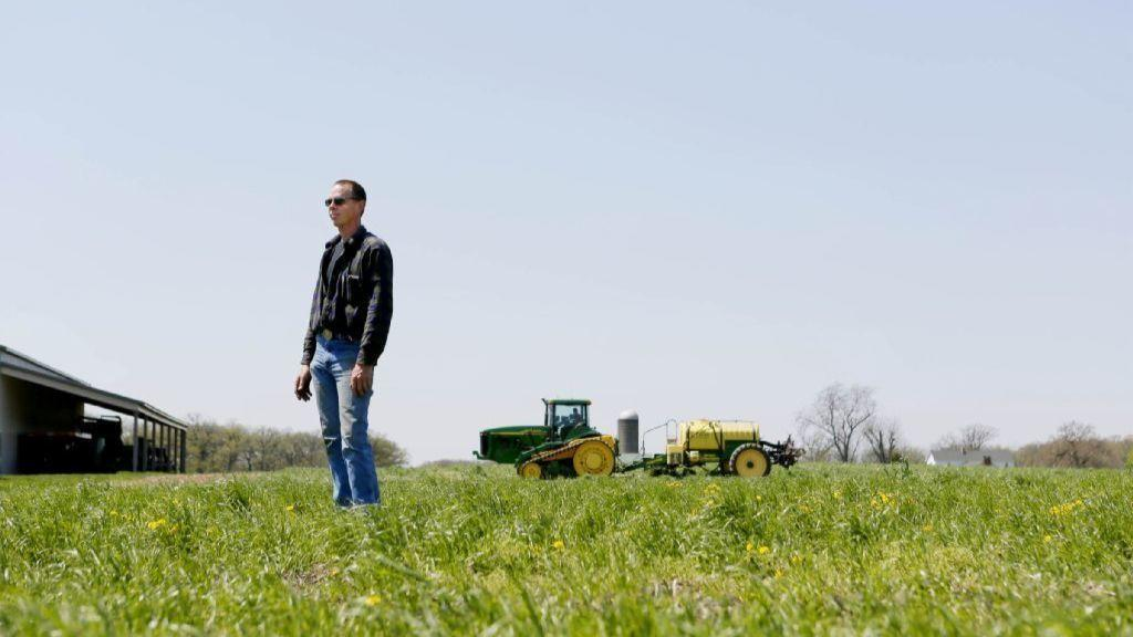 Farmers reap benefits of cover crops with better soil