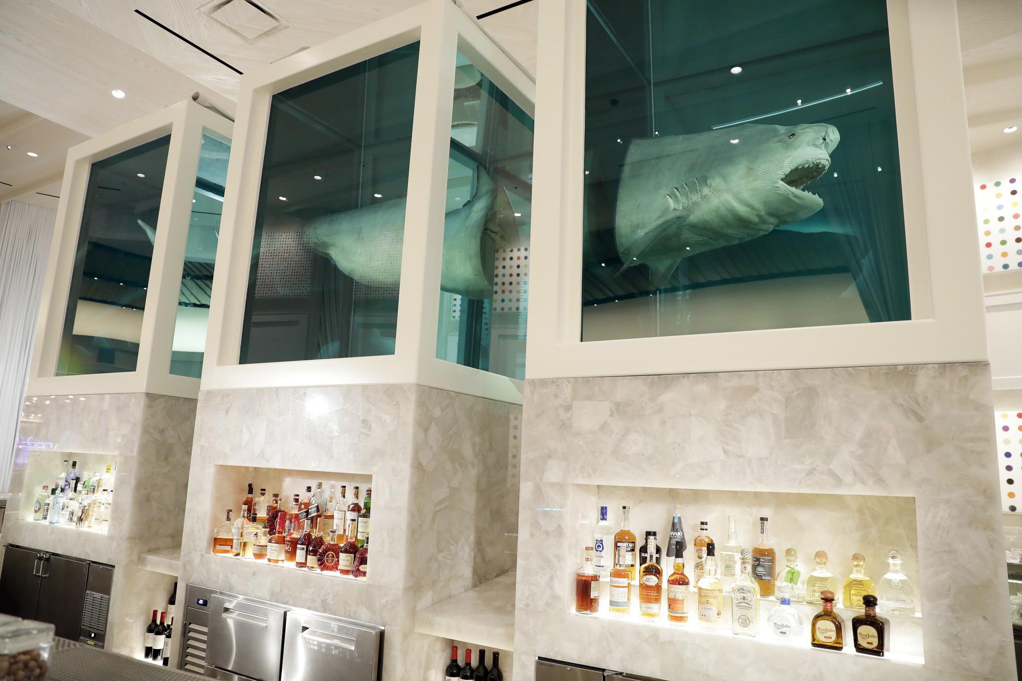 Damien Hirst's Vegas shark