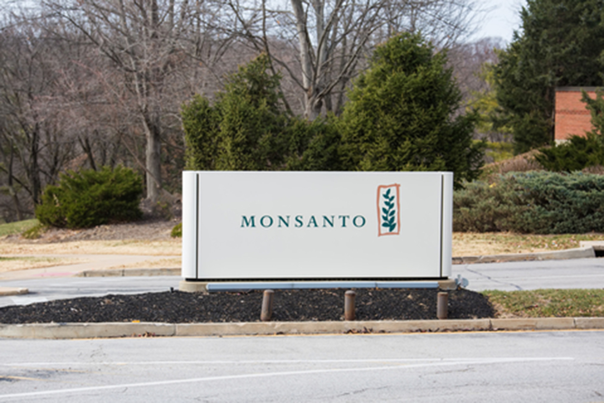 monsanto company essay Free essay: parker gross mktg 495 case #3 - monsanto i: situation analysis monsanto is a company that some people may not be explicitly familiar with on a.