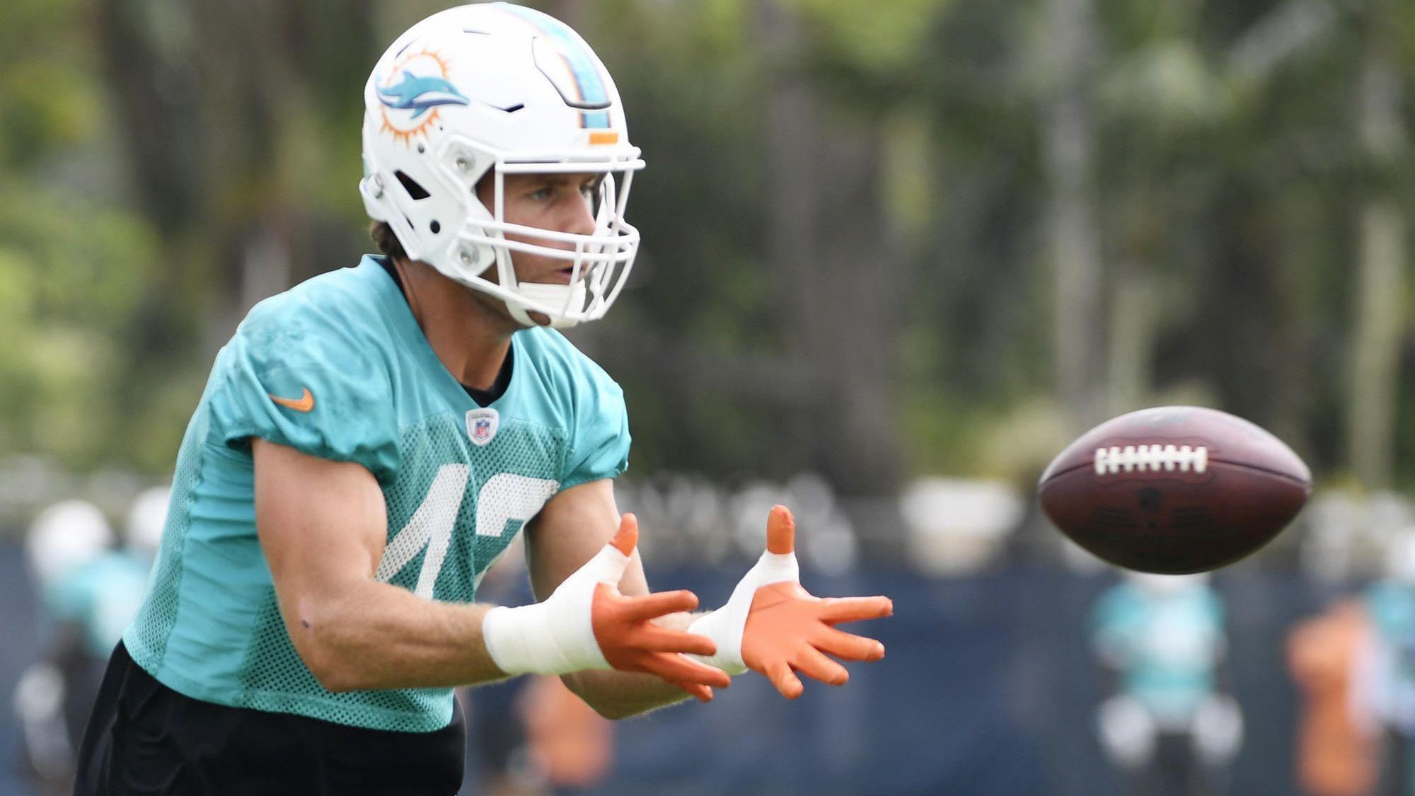 Fl-sp-dolphins-alonso-20180606