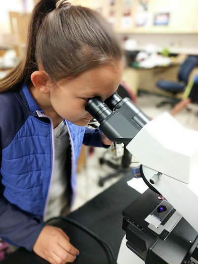 Biology camp