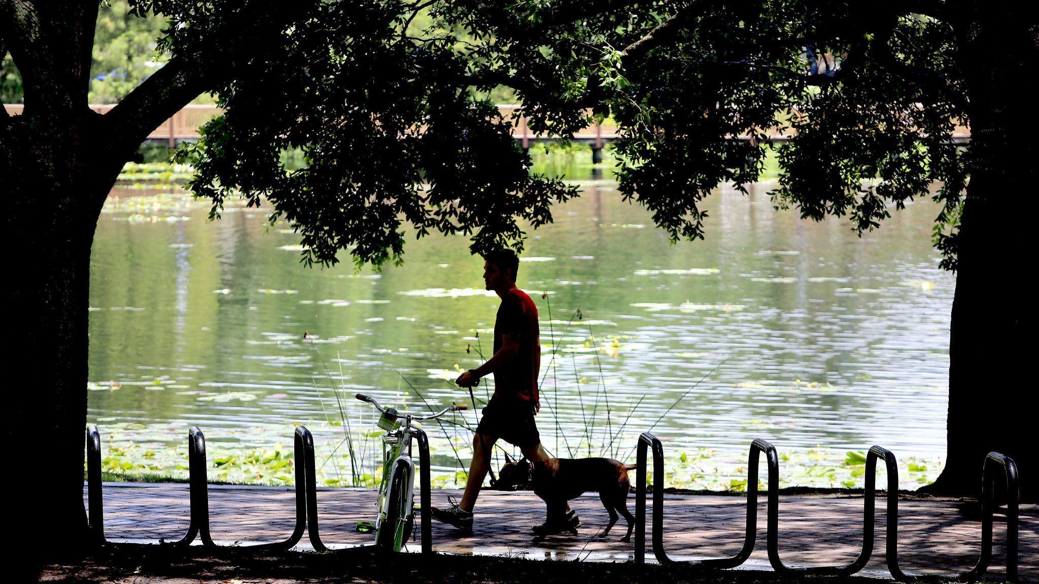 Lake Lily Park