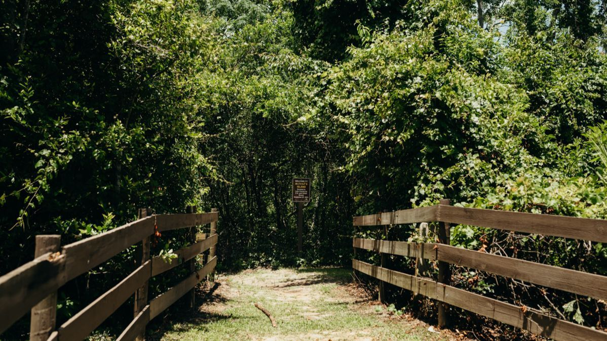 Haynes Creek Preserve