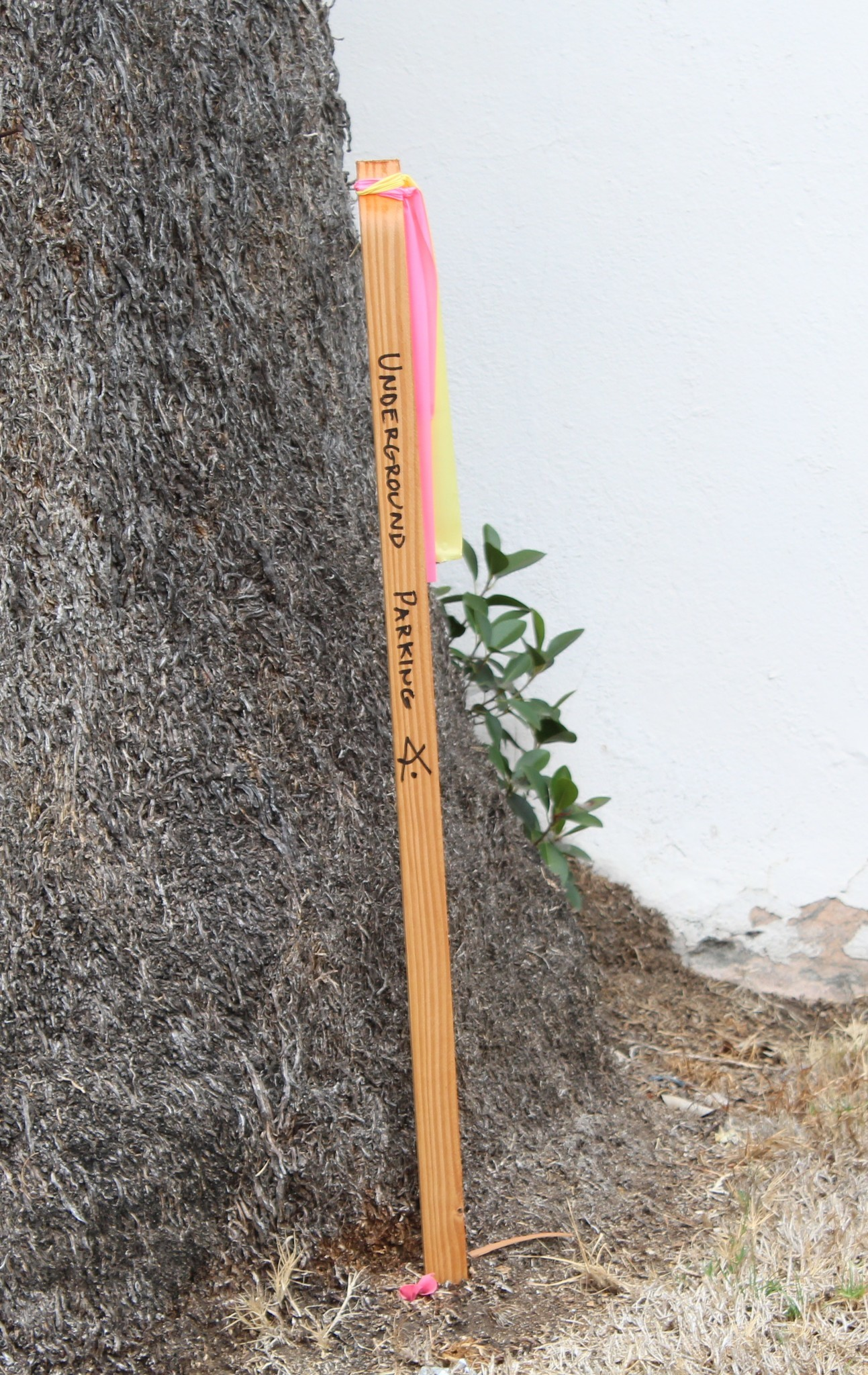 A marker near a tree in the house's front yard tells demolition workers the location of the museum's future underground garage.