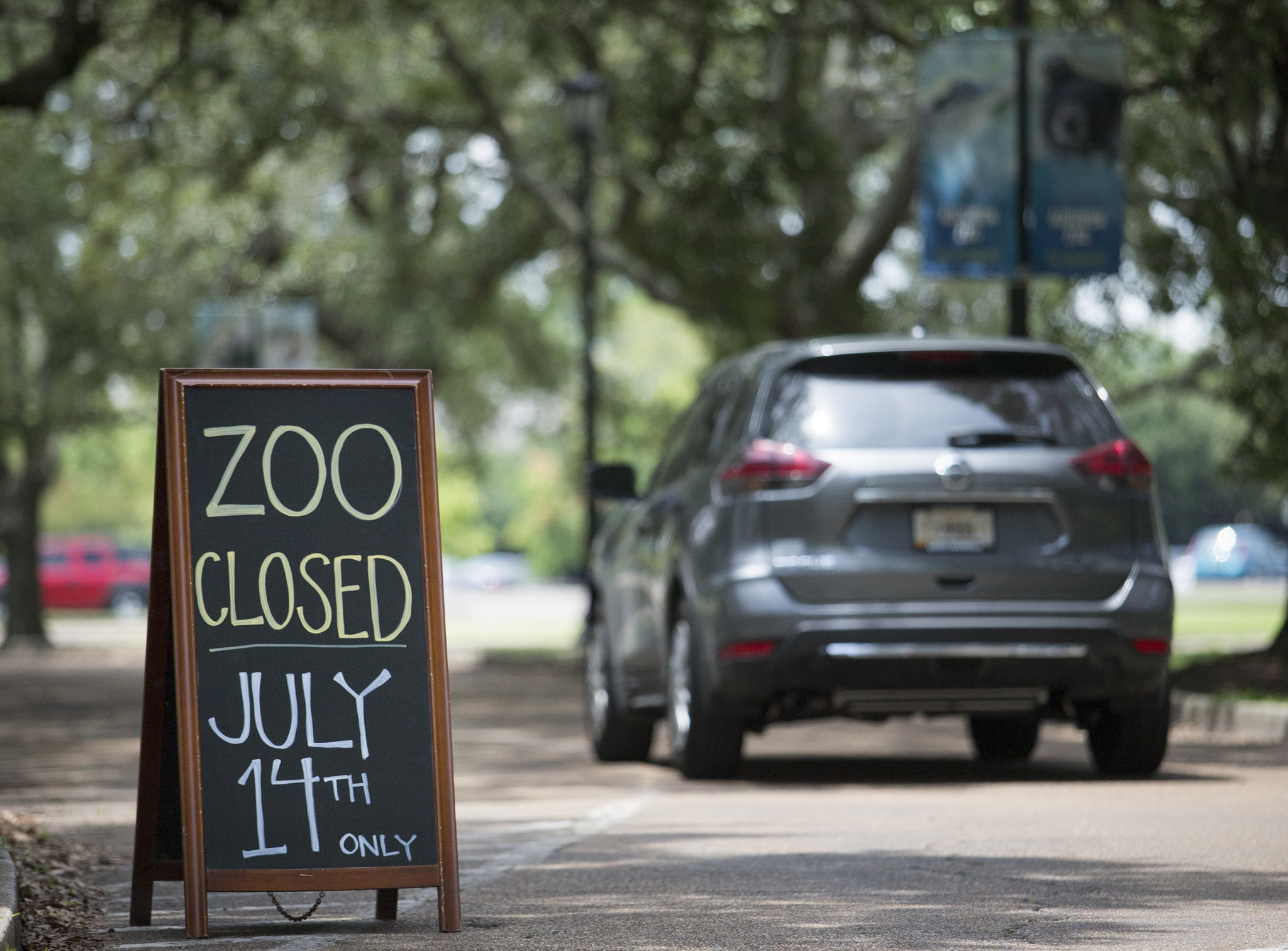 Death Of Fox Marks 9th Casualty After Jaguaru0027s Escape At New Orleans Zoo    Chicago Tribune