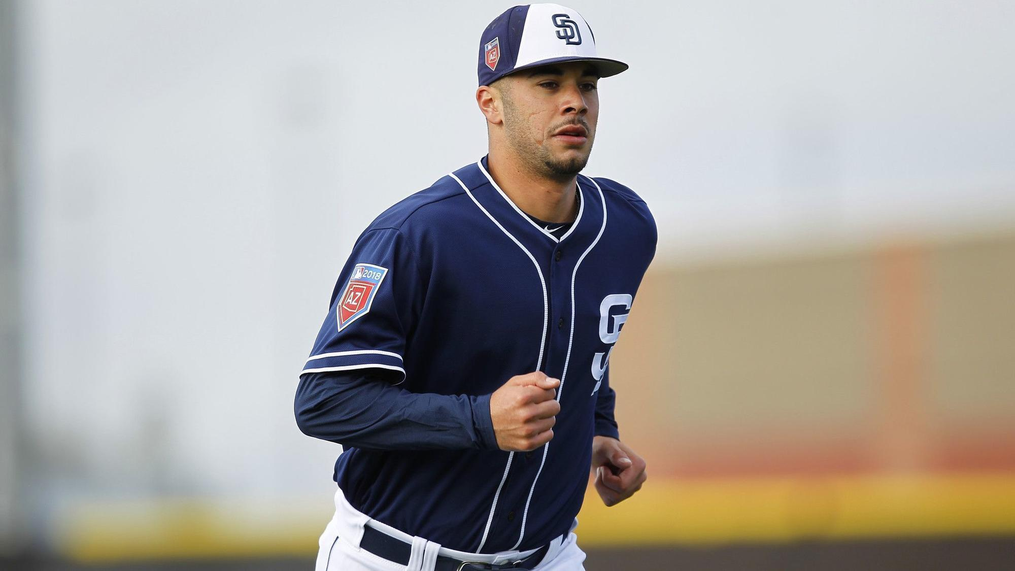 Sd-sp-padres-minor-league-report-20180719