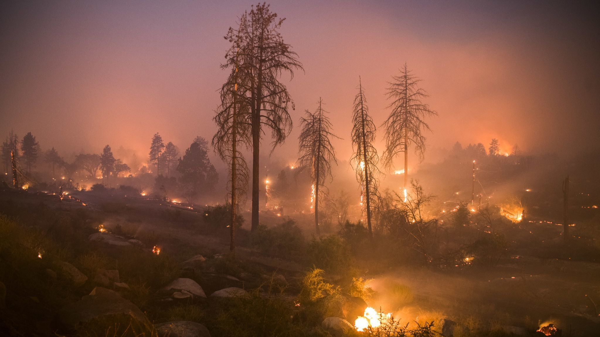 5 homes destroyed in suspected arson near Idyllwild; thousands ordered to evacuate