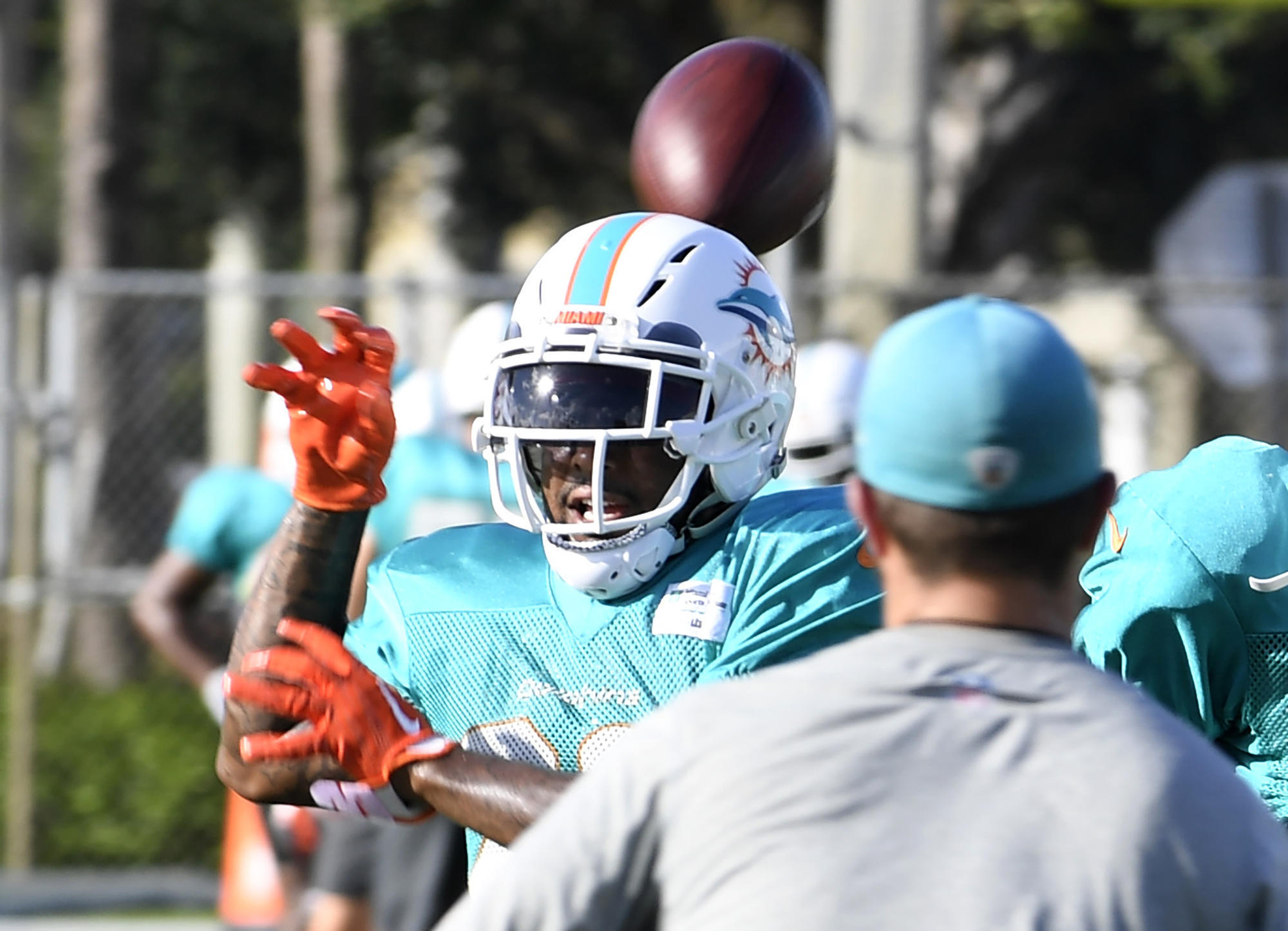 Fl-sp-dolphins-maurice-smith-20180807