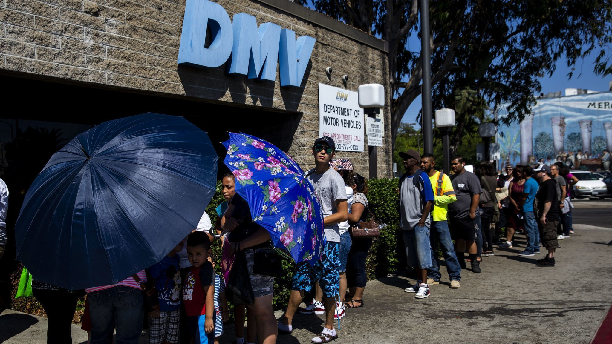 California lawmakers grill DMV official over ballooning wait times